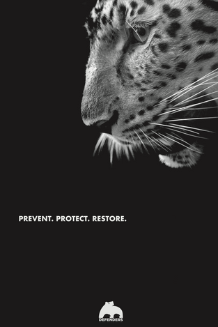 Defenders of Wildlife Poster Series