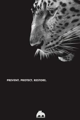 Defenders of Wildlife Poster Series