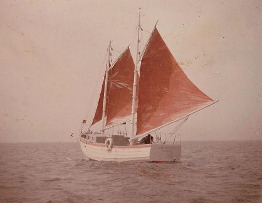 1960Peck'sRedwing2.jpg