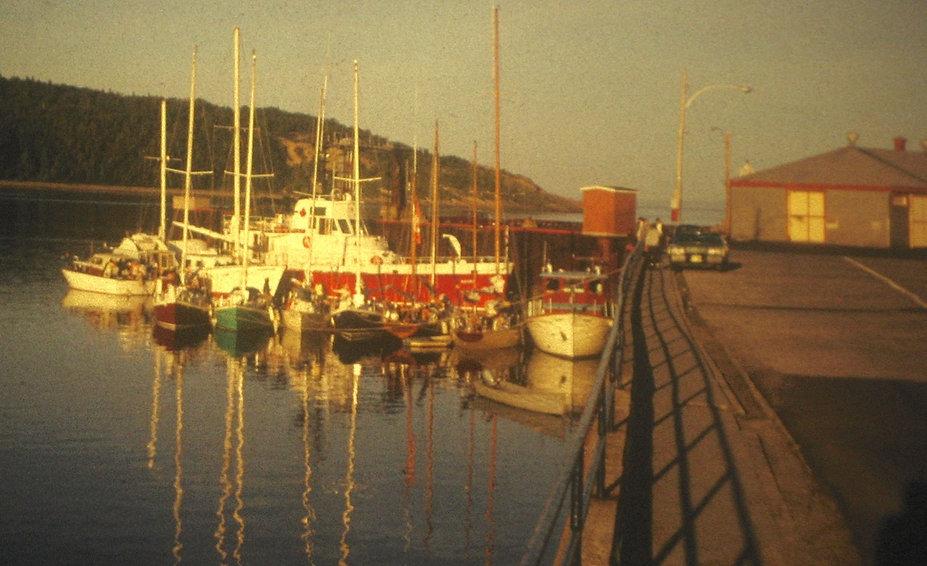 1965 LotsofSailboats.jpg