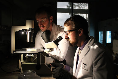 James and Christoph analyizing samples in a lab using a microscope.