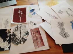 Various mono - prints