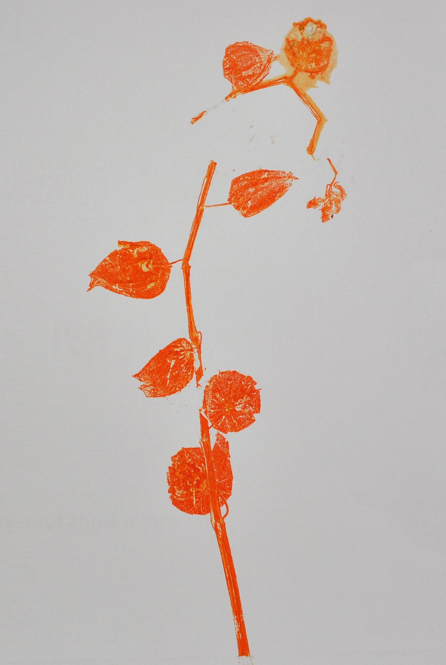 Orange monoprint