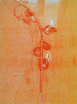 Orange monoprint (impress)