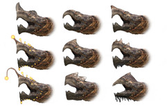 turtleheads.jpg