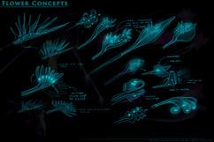 Flower-concepts2.jpg