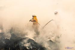 firefightersrrr