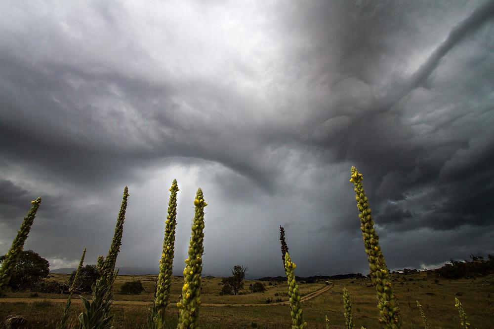 its stormy.jpg