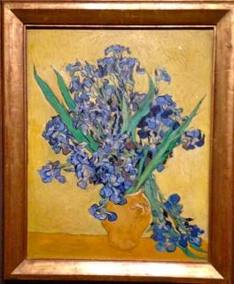 Irissmall