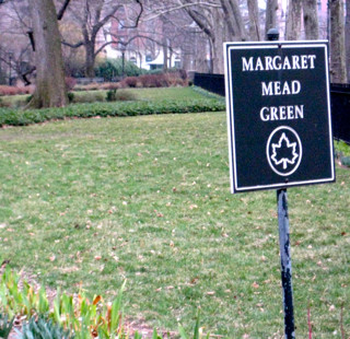 """""""To the extent . . ."""" Margaret Mead"""