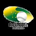 baseballaus.png