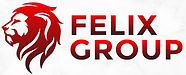 30874_ Felix Group Logo_ MJ_03_mockup (1