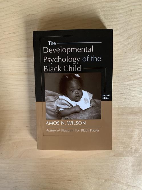 The Developmental Psychology of the Black Child