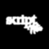 Skriptnotes_Square logo.png