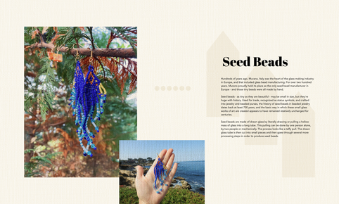 SEED BEADS.png