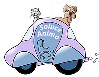 Soluce Animo
