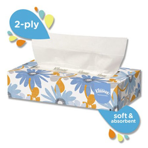 White Facial Tissue, 2-Ply, 125 Sheets/Box, 12 Boxes/Carton