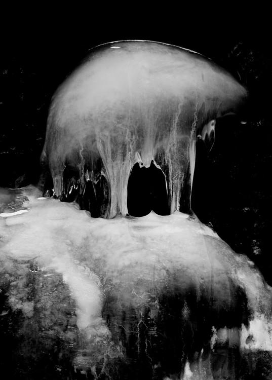 Ice Jelly Fish