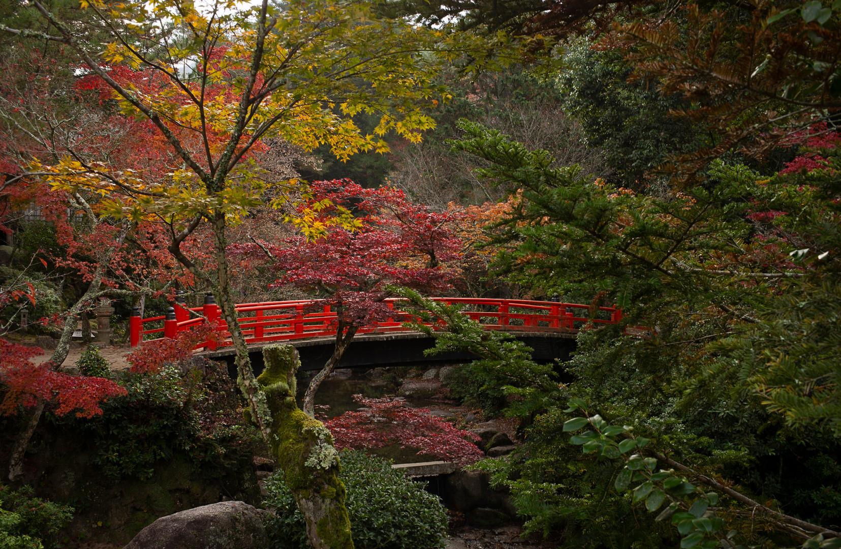 Red Bridge Mirayashima