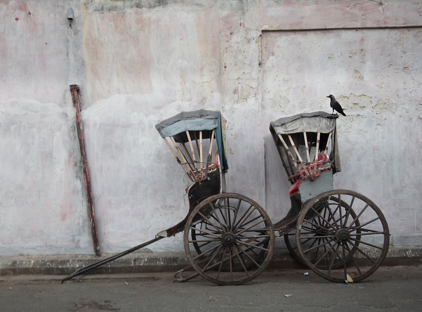 Two Rickshaws and a Blackbird, Kolkata, Kolkata