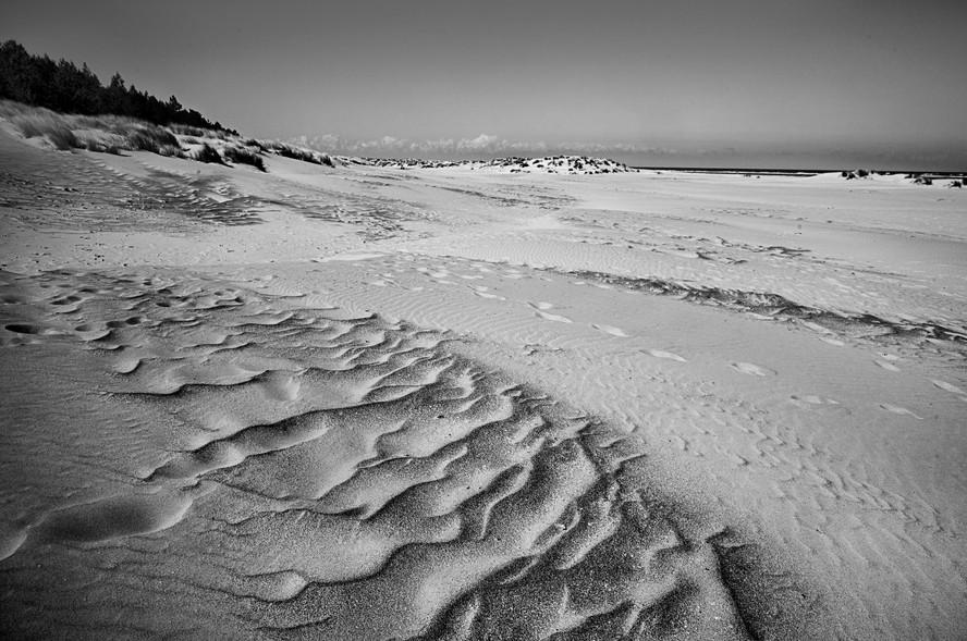 Wells Beach