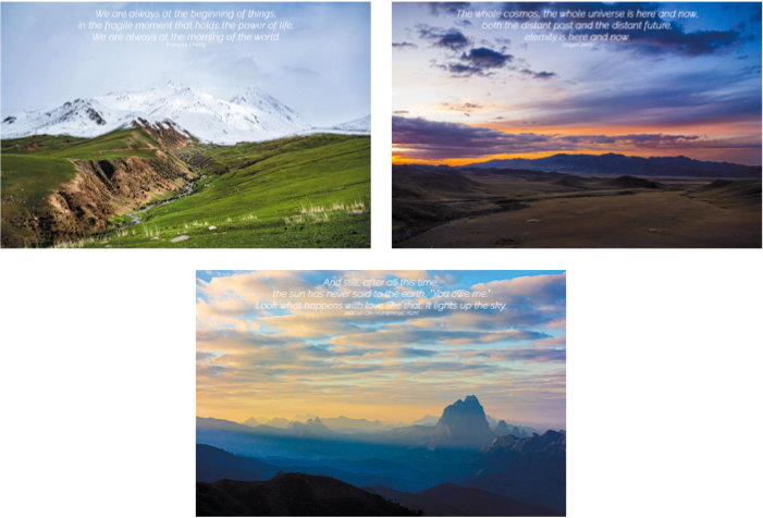 Timelessness | Note Card Collection