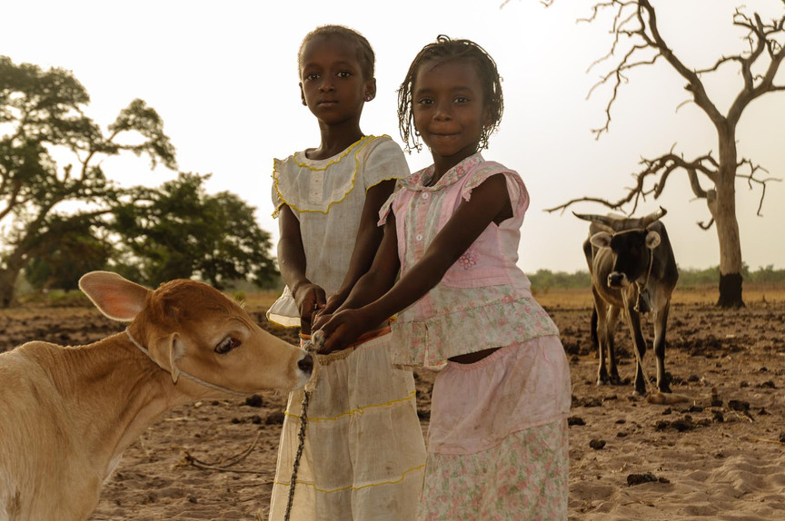 Girls and cow