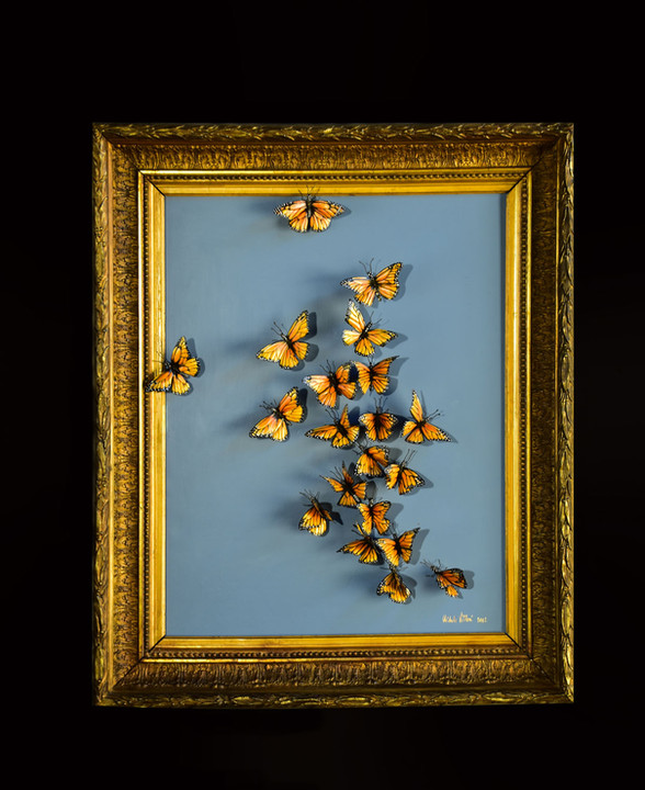 Migration 2012 Michele Vitaloni