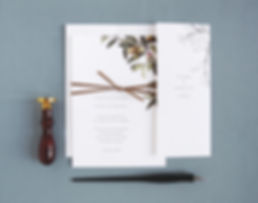 Oliva wedding invitations, Rachel Marvin Creative, velvet ribbon belly band, olive branch, enclosure