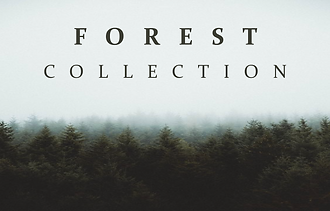 Forest Collection.png