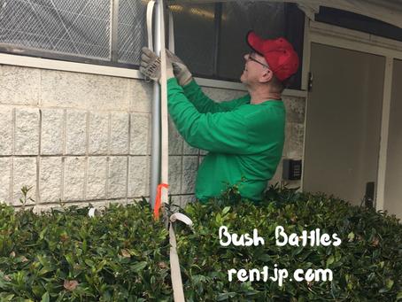 Bush Battles