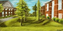 UNCW Dorms