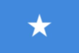 2000px-Flag_of_Somalia.svg.png