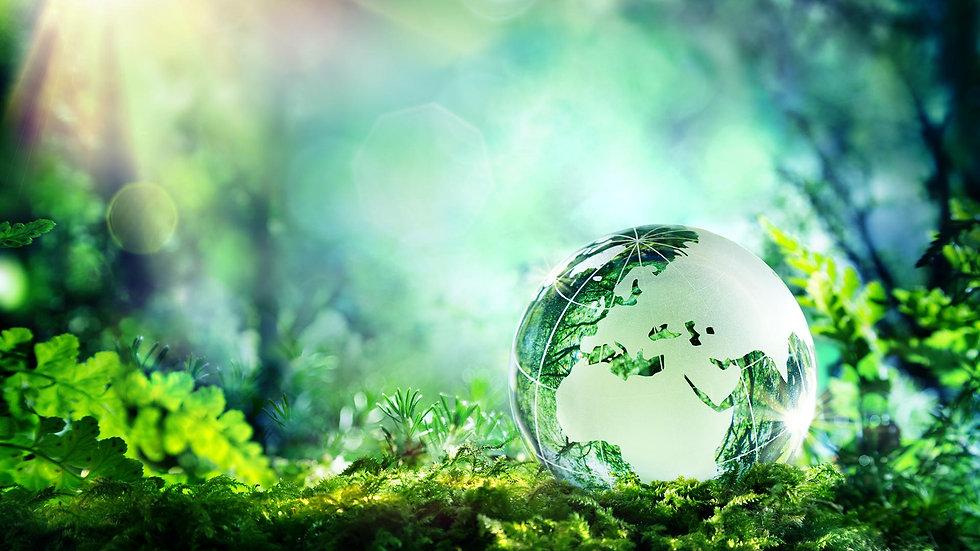 Grüne Welt.jpg