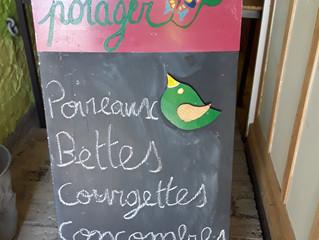 Légumes de saison au magasin des Alizés.