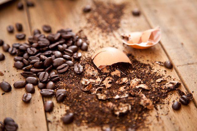 Marc de café, coquilles d'oeufs . . .