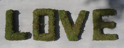 LOVE lettre mousse des bois