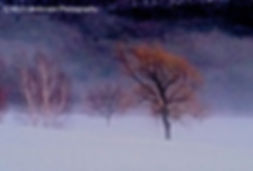 Winter, Snow, Windham, New York, Photorapher, Landscape, Photo, Photography