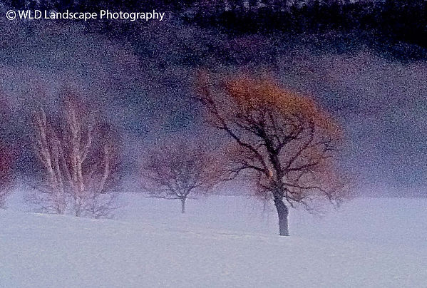 Winter, Snow, Windham, New York, Photorapher, Landscape, Photo, Photography