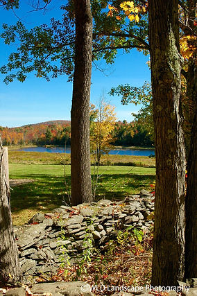 Autumn, Fall, Nature, Catskills, Trees, Mountains, Photo, Photography. Photograher Landscape