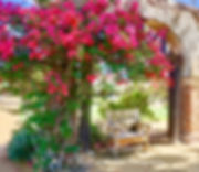 San Juan Capistrano, Misson, Photographer, Photo, Travel, California