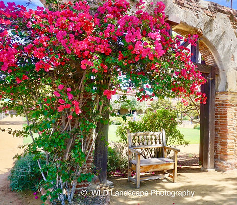 San Juan Capistrano, Misson, Photographer, Photo, Travel, California