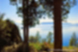 Lake Tahoe, Burn Day, Winter, Woods, Photographer, Photo, Photography
