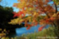 Hudson, New York, Photgraphy, Photo, Photographer, Landscape, Nature