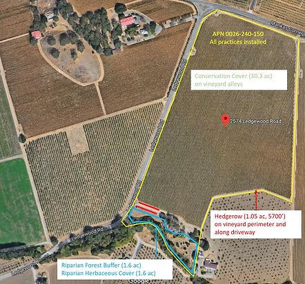 Wild Oak general plan.jpg