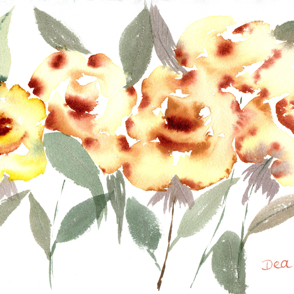 rosas amarelas.jpg