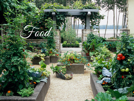 Growing Your Own in Raised Beds