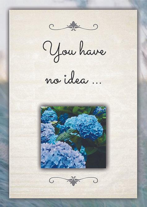 You Have No Idea