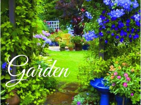 Creating A Garden Haven