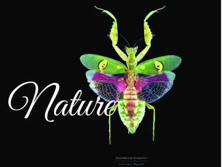 Mother Nature, Artist Extraordinaire